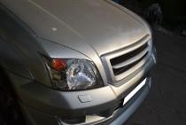 Фото решетки радиатора Toyota Land Cruiser Prado 120 (купить реш