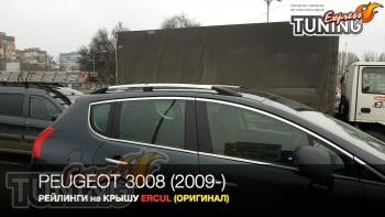 Рейлинги на Peugeot 3008 1